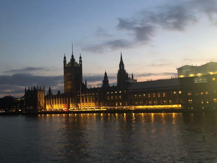 A view of the Palace of Westminster